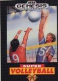 Super Volleyball (1991)